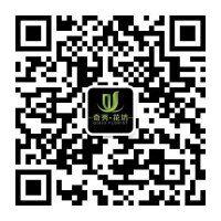 重庆同乐城注册公司二维码