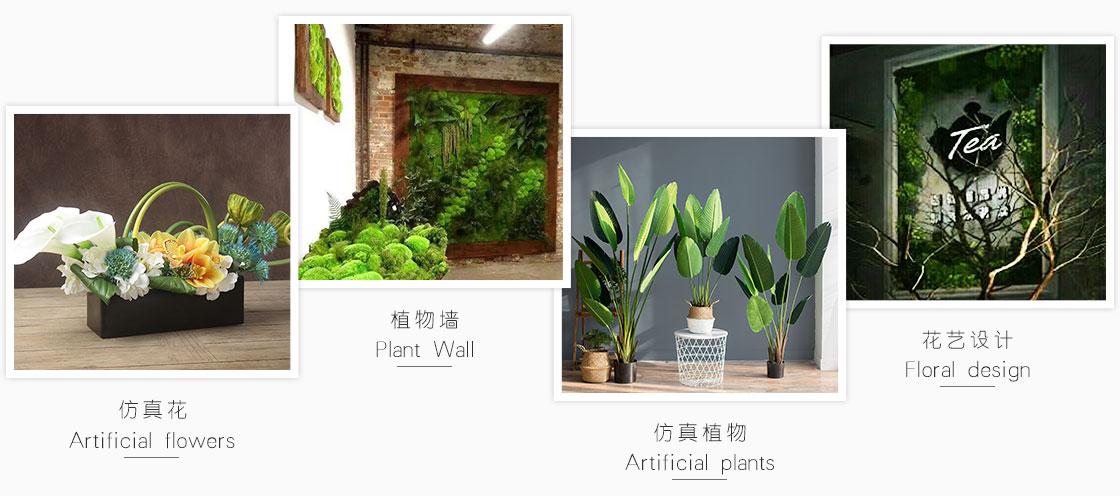 重庆植物墙设计